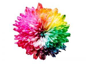 پرینتر ها و انواع ان رنگ